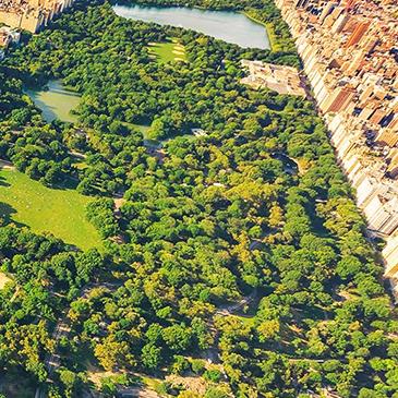 Descobrindo o Central Park