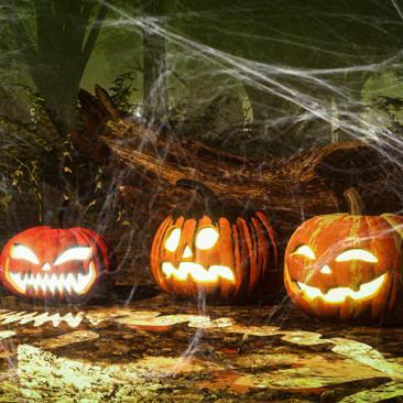 O que não pode faltar no seu Halloween